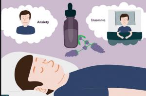 Aromatherapy for sleep disorder Powerpoint presentation